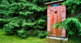 Best Composting Toilet Reviews and Buying Guide