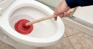 Best Toilet Plunger Reviews and Buying Guide