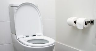 Best Toilet Reviews and Buying Guide