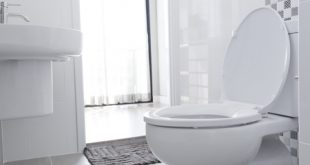 Best Toilet Seat Reviews and Buying Guide